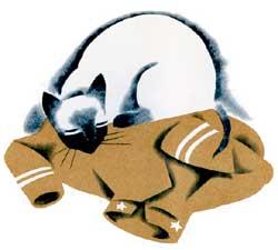 Suki, the Siamese Pussy, Thomas Nelson, 1937